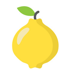 Quince flat icon fruit and diet vector