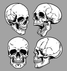 Set of skull in hand drawing style vector