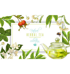 Herbal tea frame vector