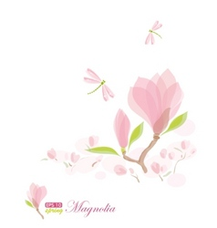 Magnolia branch and dragonfly vector