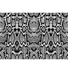 Snake python skin texture Seamless pattern black vector image