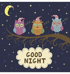 Good night card with cute sleeping owls vector image