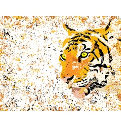 grunge tiger vector image vector image