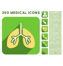 Lungs Icon and Medical Longshadow Icon Set vector image