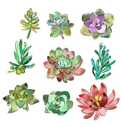Set of floral elements in a watercolor vector