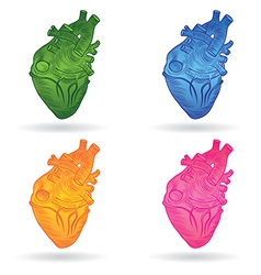 Heart real set vector