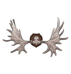 Color of moose antlers trophy vector