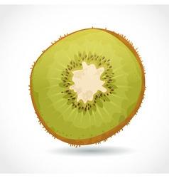 Fresh ripe piece of kiwi isolated on white vector image