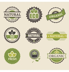 Ecology organic icon set eco-icons vector