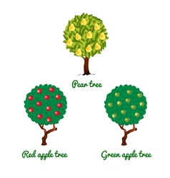 Fruit trees apple and pear vector
