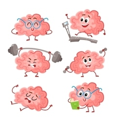 Funny brain training with barbell dumbbells on vector image