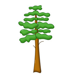 pine tree icon cartoon style vector image