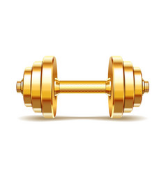 Golden realistic dumbbell vector