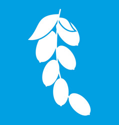 Branch of cornel or dogwood berries icon white vector