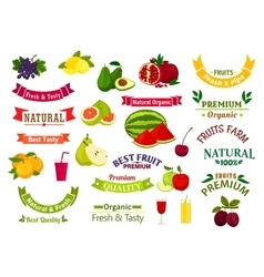Fruit emblems ribbons of juice jam product label vector