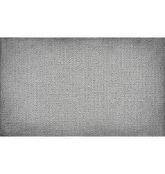 Gray canvas with delicate grid to use as grunge vector
