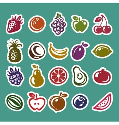 Fruit sticker icons vector