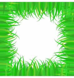 frame of grass vector image