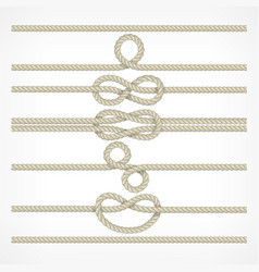 Knots and loops on ropes vector