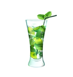 Mojito cocktail realistic vector