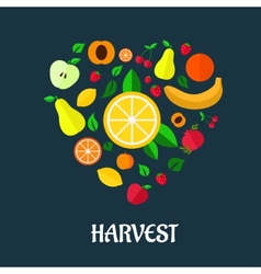 Fruits harvest flat design vector image vector image