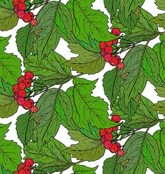 Seamless pattern with hand drawn guelder rose vector
