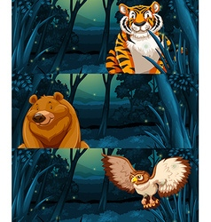 Wild animals in the woods at night vector