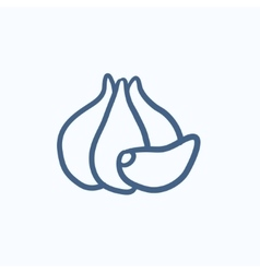 Garlic sketch icon vector