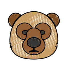 Bear icon image vector