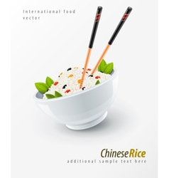 chinese chopsticks vector image