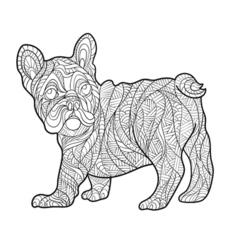 monochrome hand drawn zentagle of French bulldog vector image