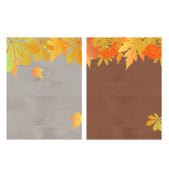 set of autumn banners with maple oak rowan and vector image vector image