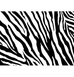 Zebra Pattern EPS 10 vector image vector image