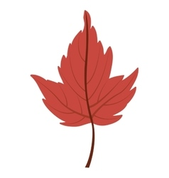 Leaf of autumn season design vector