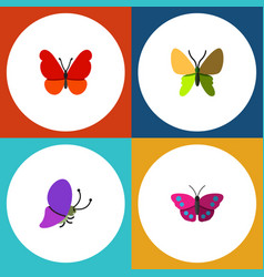 Flat moth set of summer insect beauty fly vector