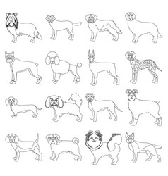 dog pooch breed and other web icon in outline vector image