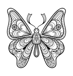 Zentangle black butterfly for adult anti vector
