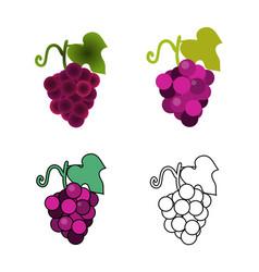 foru grape icons vector image vector image