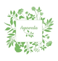 Green square frame with collection of ayurveda vector