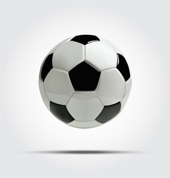 realistic soccer ball or football ball vector image