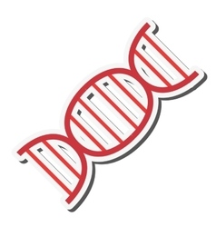 Dna strand icon vector
