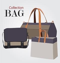 Bag c01 2 01 vector