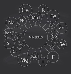 mineral names vector image