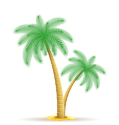 Palm tree 15 vector