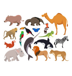 zoo wild animals cute characters isolate vector image