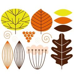 Beautiful colorful autumn leaves set vector image