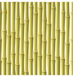 abstract bamboo background vector image