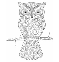 Owl on a branch coloring book for adults vector