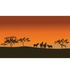 Zebra family of silhouette in hills vector