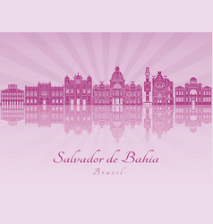 Salvador de bahia v2 in purple radiant orchid vector